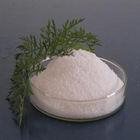 good supplier Online pharmacy emulsifier Carboxymethylstach Sodium in china