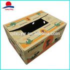 Printed Vegetable Packaging Carton Box
