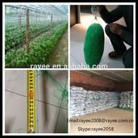bean and pea netting ,apoio planta net,fagioli e piselli rete