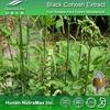 Top Quality Cimicifugae Racemosae Rhizome Extract 5:1 10:1