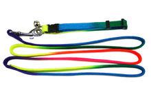 Nylon padded Dog Leash/Pet Leash