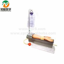 Full functions rotatable upper-arm artery puncture training model(medical model) BIX-HS8