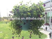2014 beautiful Plastic planters pot Hanging basket flower pot, green hanging flower pot