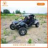 600cc single cylinder beach buggys