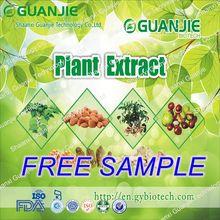 High Quality Free Sample Natural SCHIZANDRA EXTRACT POWDER