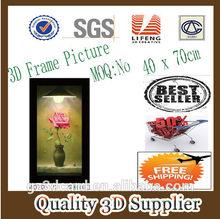 New Material PET 1.5mm WKH 2014 hot sale bulk cheap plastic pvc halloween 3D picture photo frames