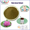 Natural pure high quality isoflavones 20% 40% red clover plant extract suppliers China