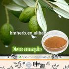 High Quality Free Sample Olive Leaf Extract 1-98% Hydroxytyrosol / 10-98% Oleuropein