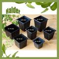 venta caliente de maceta negra cuadrada de HIPS de muchos tamaños para flores con semillas