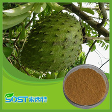 Free Sample Graviola Fruit Extract/Graviola Extract