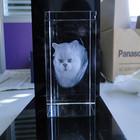 2D,3D Laser Etched Crystal Animal For Gift
