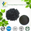 ISO Certificate factory supply 100% Natural Black Sesame Seeds Extract 10%~99% Sesamin