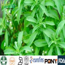 Natural sell reb-a stevia