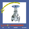 Russia Standard Stainless Steel Flange Ends Gate Valves