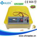 السوق الصينية للحاضنة الإلكترونية 12 220 حاضنة الصين فولت فولت