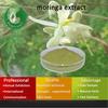 organic moringa seeds/Moringa Extract/moringa extract