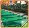 Green asphalt paving on footpath, bicycle lane and garden