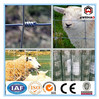 Top-selling cheap metal animal farm fence (ISO & CE factory)