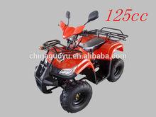 Mini Quad bike 125cc ATV sports ATV