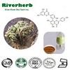 Natural Selaginella Tamariscina Extract, 20% - 98% Amentoflavone