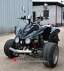 CE approved 250cc three wheel motorcycle atv