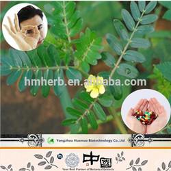 Best selling products tribulus terrestris powder herbal aphrodisiac