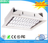 Factory Price Meanwell Driver ip65 100w led gas station canopy lights