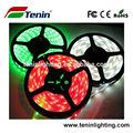 Fita vermelha verde SMD5050 12 v fita vermelha verde tira conduzida com CE & ROHS China factory