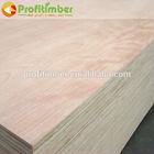 Interior Decor Plywood Shuttering Board