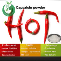 100% pure capsaicin hot capsaicin sauce synthetic capsaicin
