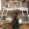 2 Story Rabbit Hutches