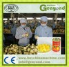 Complete sliced pineapple canning machine / salty pineapple production line