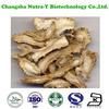 Dong Quai Extract powder