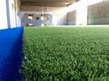 campo de fútbol con azul zona de amortiguamiento