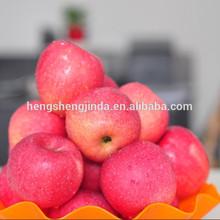 Fuji apple in Grade one From Yantai