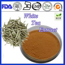 100% Natural White Tea Extract