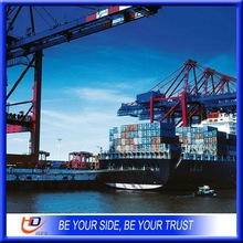 LCL sea freight consolidate service to euro