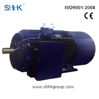 low voltage asynchronous electrical motor of China