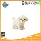 Pure white dog with big eyes plush toy
