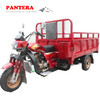 PT250ZH-CH Chinese New Model Hot Sale Powerful Tricycle For Handicapped