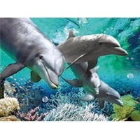 Plastic 3d aquarium background for dolphine pictures to print for sale