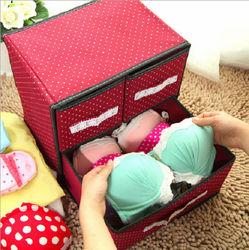 Korean Style Creative Bra and Underwear Organizer Box/Storage Box