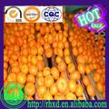 lista de frutas amarelas tangerina fresca preço