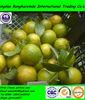 2014 new crop fresh sweet baby orange