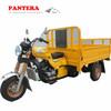 PT250ZH-CF Various Hot Sale New Model Powerful 200CC 3 Wheel Motorcycle Chopper