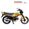 PT-125B Powerful Golden Gas Chinese Durable Hot Sale Street Bikes Supplier CE Motorcycle China