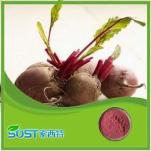 Factory supply high quality organic beet sugar