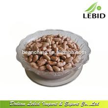 Venda quente luz salpicado feijão / feijão / grãos de açúcar