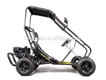 LWGK-50A kids Mini go kart, 196cc power ,Hydraulic disc brake,EPA ,Black Roll cage