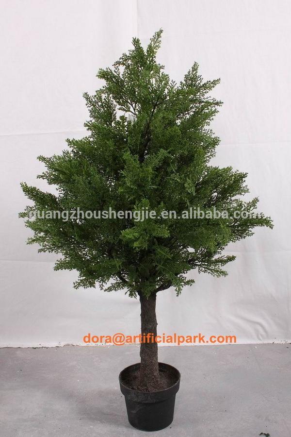 Sjh100555 d 39 int rieur en pot arbres d coratifs en bois for Arbre decoratif interieur